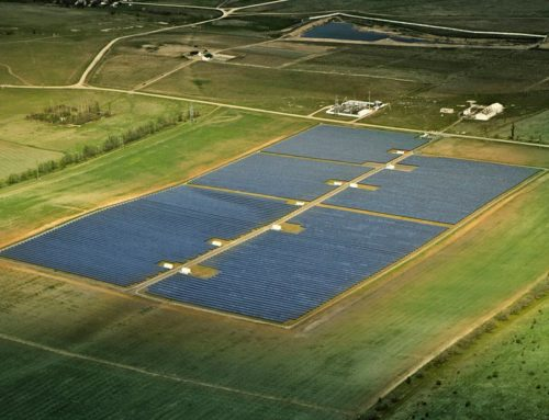 Inversión en parque solar  issa tafich